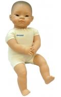 Baby Pelón Asiático (40 cm)